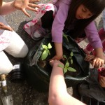 Kids getting their hands dirty