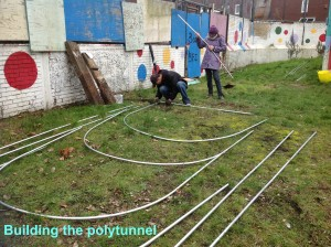 Building the polytunnel
